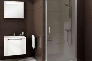 Душевая дверь RAVAK BLDP2-100 L/R полированный алюминий+transparent